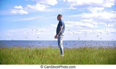 stands, sur, voler, hirondelles, jeune, vert, troupeau, rivière, colline, homme