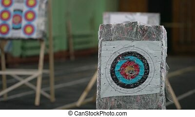 Someone shooting arrows at printed aim marks view