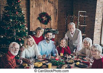 stanza, atmosfera, foto, tavola, pieno, newyear, assemblea, decorazione, multi-generation, proposta, festa famiglia, grande, dentro, riunione, cena, vivente, albero, sedere, sempreverde, ritratto