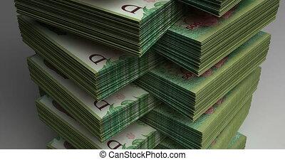 stapel, van, argentijn, pesos