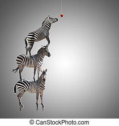 stapel, van, zebra, reiken, om te eten, appel