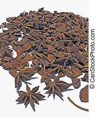 Star Anise, Illicium verum Hooker fil., Illiciaceae
