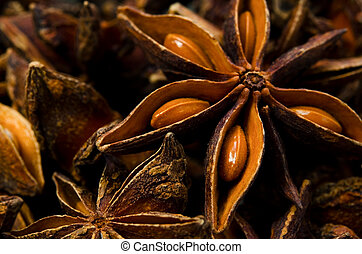 star anise - Cooking ingredient series star anise. for adv...