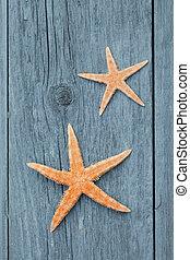 star fish on rustic wood