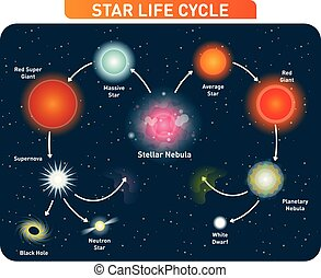Star life cycle steps from stellar nebula to red giant to black hole. Vector illustration diagram.