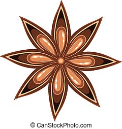 Star of anise - Aromatic spice star of anise illustration on...