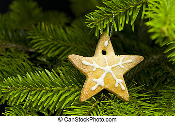 Star shape short bread cookie in  Christmas tree