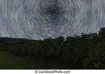 Star Trails over Vineyard. Night sky startrails.