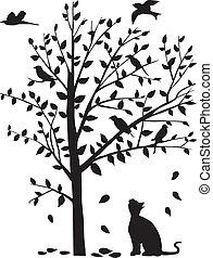 staren, boompje, vogels, kat