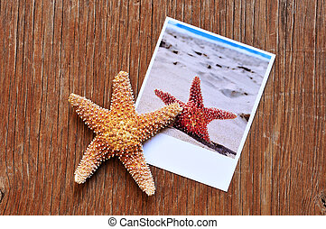 starfish and an instant photo of a starfish on a wooden surface