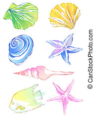 drawing of beautiful starfish, conch and scallop