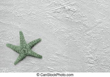 Starfish and ice