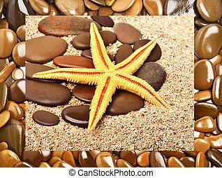 Starfish and pebble on the sand