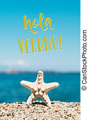 starfish and text hello summer in spanish