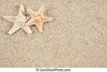 starfish, em, a, areia praia, -, espaço cópia