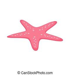 Starfish icon, isometric 3d style