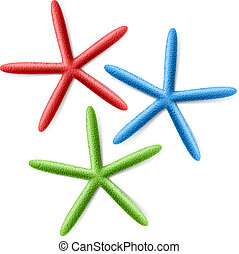 Starfishes illustration