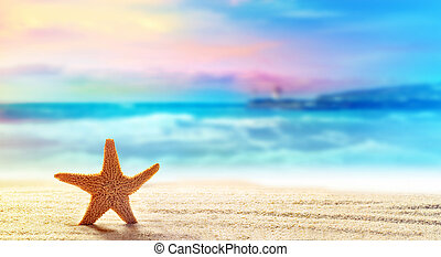 Starfish in sand on the beach