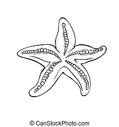 Starfish isolated on white.Drawing style black and white.