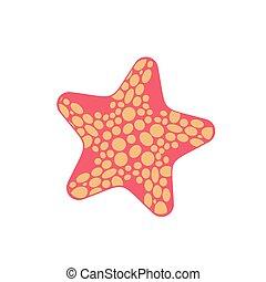 Starfish isolated. Sea animals on white background. aquatic mollusk star