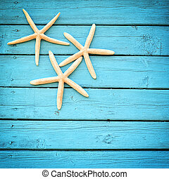 starfish on a blue background