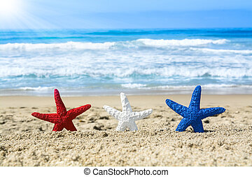 Starfish on beach during July fourth - Conceptual summer...