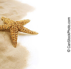 Starfish on the Sand border design. Isolated on white....