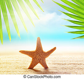 Starfish on the sandy beach and palm leaf