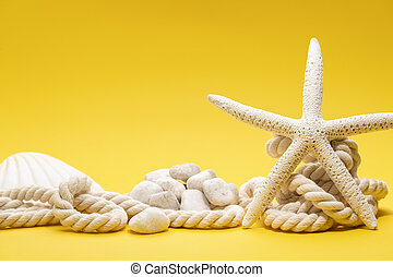 Starfish, shells, stones and rope on a plain yellow background