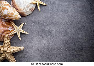 Starfish. - Starfish on gray stone surface. Travel...