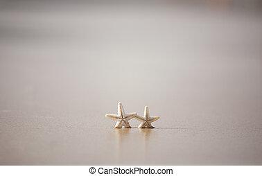 starfish, su, uno, sabbia spiaggia