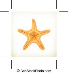 Starfish vector icon