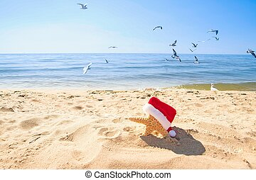 starfish with Christmas hat in sand