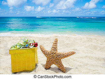 Starfish with gift box on the beach