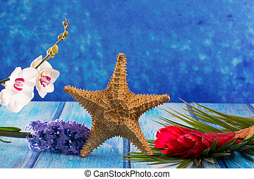 starfish with hyacinth flower and white orchid on blue wood