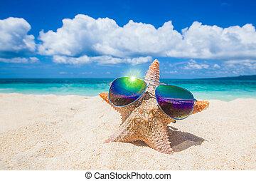 Starfish with sunglasses on beach