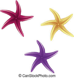Starfishes - Set of purple, violet and yellow starfishes on...