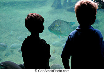 Staring Contest - Two little boys silhoetted against a fish...