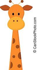 Staring giraffe vector or color illustration