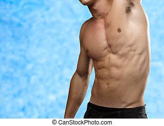 stark, torso