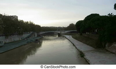 starling flock in Rome - flock of starling over Tiber river...