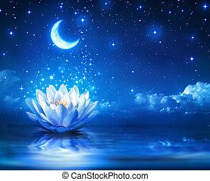 starry, mond, waterlily, nacht