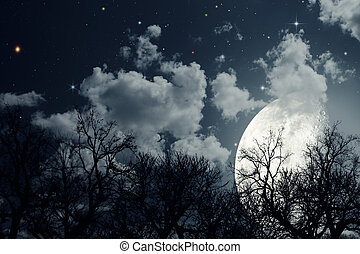 Starry night. Abstract environmental backgrounds