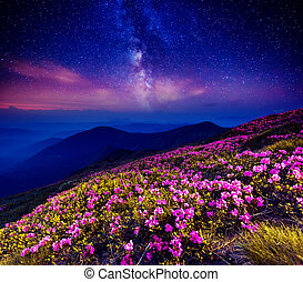 starry night in mountain - Great view of the magic pink...