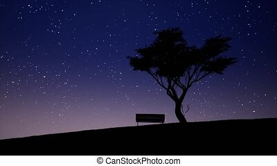 Starry night realistic footage. Lonely tree, bench...