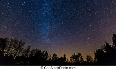 Starry night sky with Milky way over forest