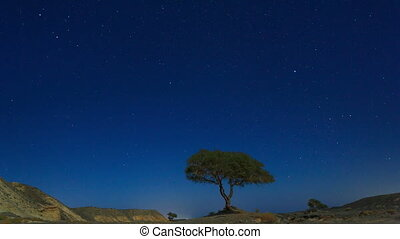 Starry sky in Egypt