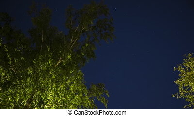 Starry summer sky night time lapse clip