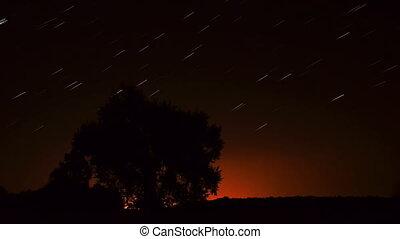 Stars in the night sky