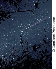 Stars on the sky at night with meteor and tree